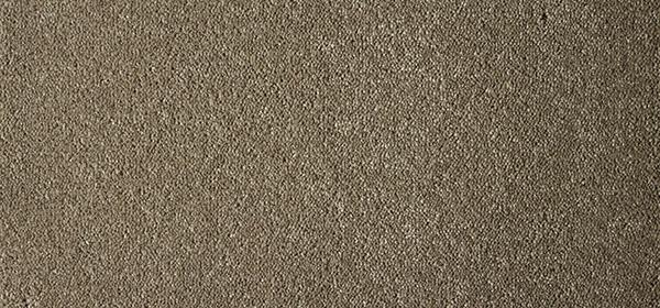 Victoria Carpet Rendell Plush Carpet Paradise
